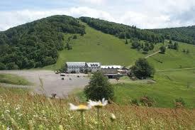 Hautes chaumes Vosges.jpg
