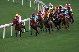 Courses de chevaux.jpg